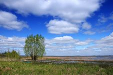 Free Spring Landscape Royalty Free Stock Photography - 3061847