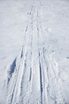 Ski Tracks Stock Image