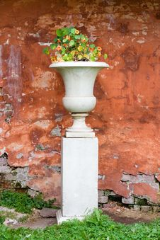 Vase With Flowers Stock Images