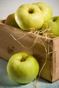 Free Autumn Apples Royalty Free Stock Photo - 3065085
