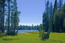 Free Mountain Lake And Meadow Royalty Free Stock Photo - 3065935