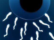 Free Sperm Royalty Free Stock Image - 3067476