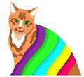 Free Ginger Cat Under A Colourful Blanket Royalty Free Stock Photography - 30602627
