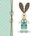 Free Rabbit Boy Stock Photography - 30606162