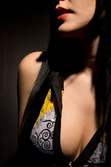 Free Portrait Of A Brunette. Women S Breasts. Royalty Free Stock Image - 30605706