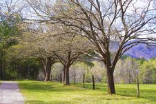 Open Fields Of Cades Cove In Spring. Royalty Free Stock Images