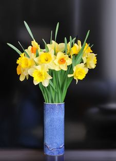 Free Daffodil Arrangement Stock Photos - 30607283
