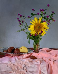 Free Flowers And Fruit In Still Life Concept Stock Image - 30610581