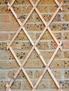 Free Garden Wall Trellis Stock Photo - 30623870