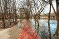 Free Flood Royalty Free Stock Photo - 30632625
