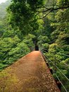 Free Steel Bridge In The Mountains In Japan Royalty Free Stock Images - 30634159
