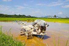 Plow Fields In Farm Rice On Blue Sky. Stock Photography