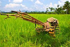 Plow Fields In Farm Rice On Blue Sky.