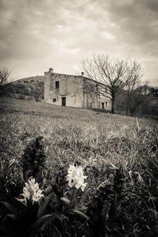 Free Abandoned Haunted House Stock Photo - 30631000