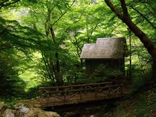 Free Small House In The Woods Royalty Free Stock Photos - 30634068