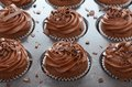 Free Chocolate Cupcakes With Swirl Frosting In Baking Pan Royalty Free Stock Photo - 30641235