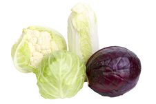 Free Cabbage Stock Photography - 30651392
