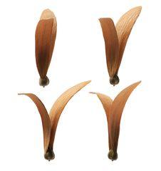 Winged Seeds &x28;hopea Odorata&x29; Stock Photo