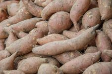 Free Fresh Potatoes Royalty Free Stock Image - 30658116