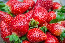 Free Fresh Strawberries Stock Photo - 30665750