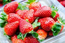 Free Fresh Strawberries Stock Images - 30665754