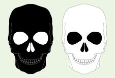 Free Skull Royalty Free Stock Photos - 30671078