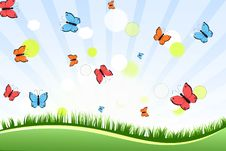 Free Landscape With Butterflies Stock Images - 30672174