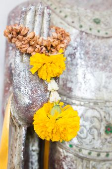 Free Flower On Buddha Hand Royalty Free Stock Image - 30674396
