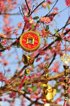 Free Ornament Of Lucky Coin And Gold Ingots On The Peach Tree Stock Photos - 30675183