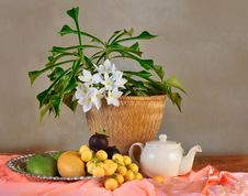Tropical Fruit And Flower Composition Royalty Free Stock Photos