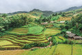 Free Stilt Houses On The Hills Of Rice Terraced Fields Royalty Free Stock Photos - 30686668