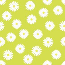 Seamless Pattern With Camomiles Stock Photos