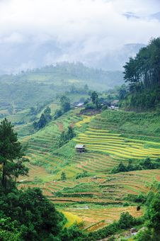Stilt House On The Rice Terraced Field With The Mountains And Clouds Royalty Free Stock Photography