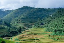 Houses Of The  Farmers On Top Of The Hill With The Rice Fields Stock Photos