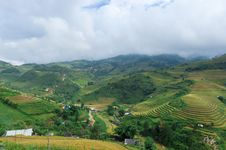 Free Hills Of Rice Terraced Fields Royalty Free Stock Photos - 30686358