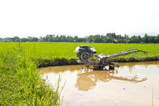 Plow Fields In Farm Rice On Blue Sky. Royalty Free Stock Images