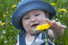 Free Little Boy In A Hat Royalty Free Stock Photos - 30690428