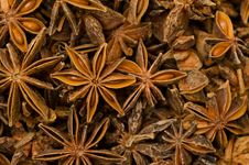 Free Star Anise Royalty Free Stock Photo - 30697035