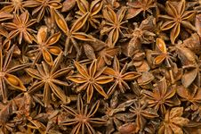Free Star Anise Royalty Free Stock Image - 30697036