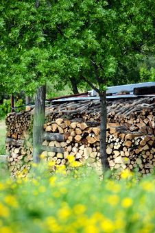 Cut Wood Storage Royalty Free Stock Image