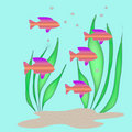 Free Tropical Fish Stock Photography - 3076262