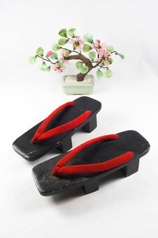 Free Japanese Shoes And Bonsai Tree Stock Image - 3070291