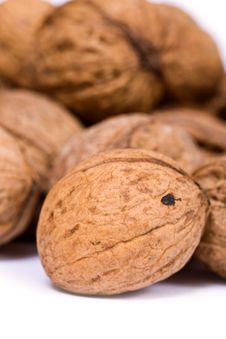 Free Walnuts Close Up Isolated Royalty Free Stock Photography - 3073687