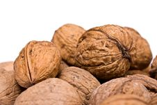 Free Walnuts Close Up Isolated Stock Photography - 3073772