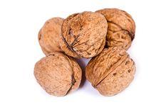 Free Walnuts Close Up Isolated Stock Photo - 3075810