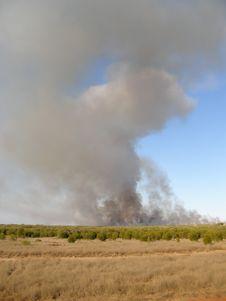 Free Broome, Western Australia, Royalty Free Stock Photo - 3075905