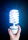 Free Hand With Light Bulb Royalty Free Stock Photography - 30703077