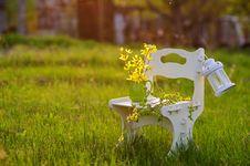 Garden In The Sunset Light Stock Image