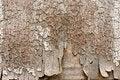 Free Background Of Old Peeling Wood Stock Photo - 30718580