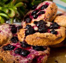 Free Homemade Oatmeal Cookies Closeup Stock Image - 30719181